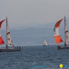 Matchrace 2010